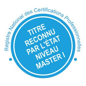 Coach professionnel parcours coaching d quipe et d organisation - Formation par correspondance reconnue par l etat ...